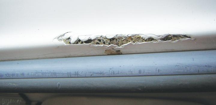 primjer oštećenog gelcoata